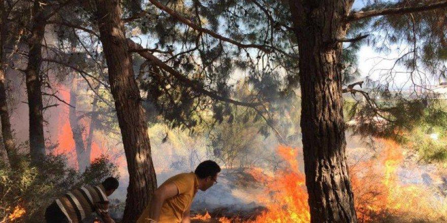 Antalya, Manavgat'ta Orman Yangını!