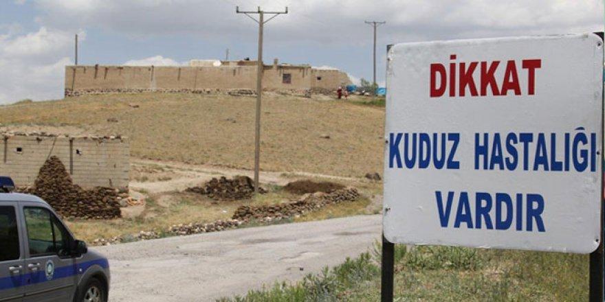 """Bursa'da O Köylerin Girişine """"Kuduz Var"""" Tabelası!"""