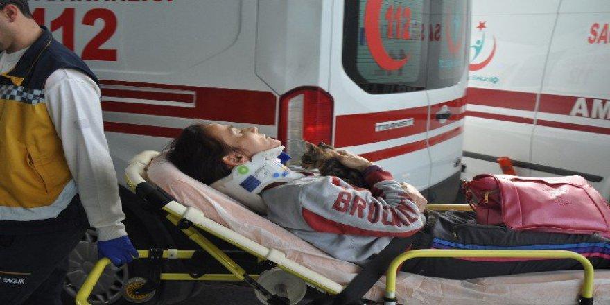 Afyonkarahisar'da Yaralı Sürüsücü Kedisini Hastanede Bile Kucağından Bırakmadı