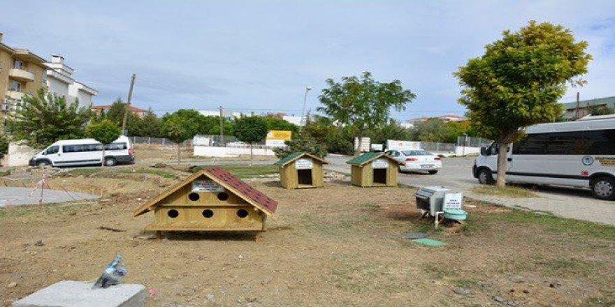Tekirdağ'da Kedi Ve Köpekler Evlerine Kavuştu
