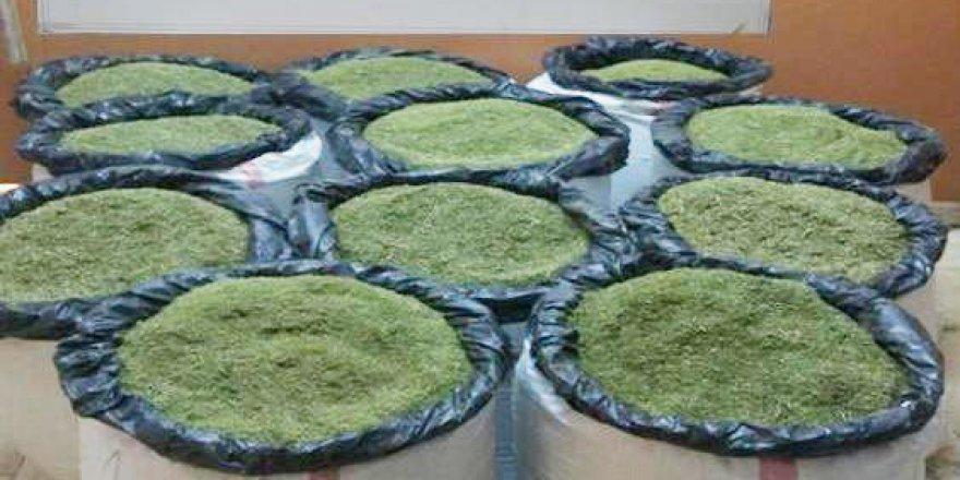 Bingöl'de 2 Milyon TL'lik Uyuşturucu Operasyonu