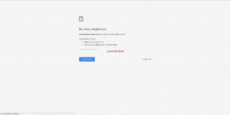 Türk Hacker Grubu ABD'nin DNS Sunucularını Hedef Aldı
