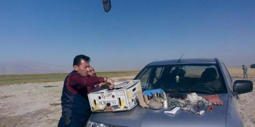 Niğde'de Yırtıcı Kuş Avcılar Yakalandı