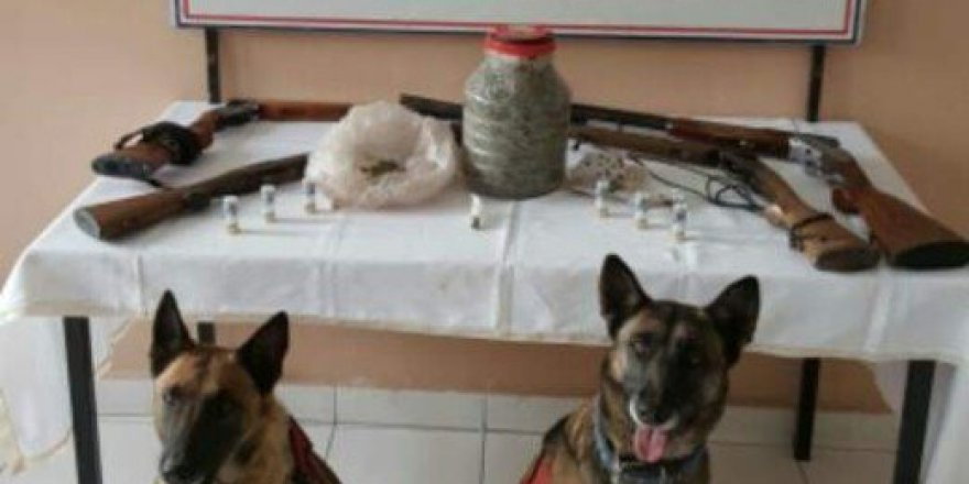 Yozgat İl Jandarma Komutanlığı'ndan Uyuşturucu Operasyonu