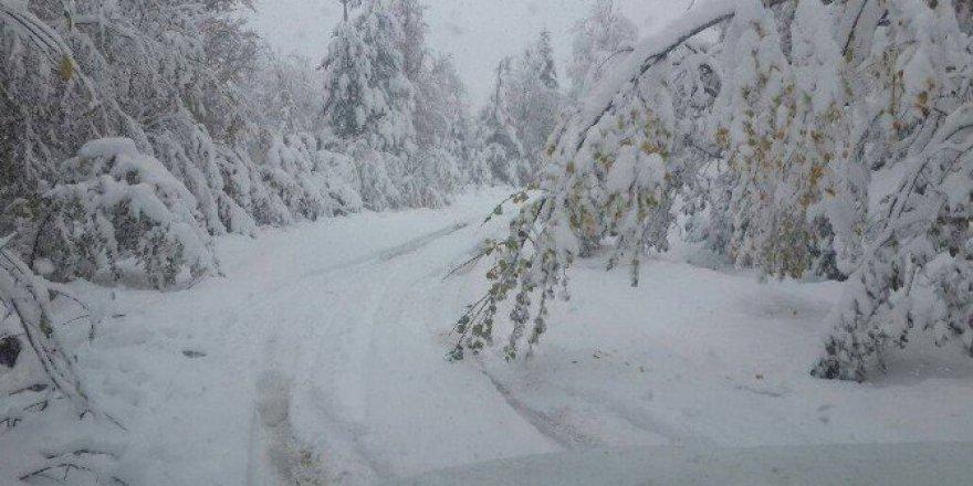 Kastamonu, Azdavay'da Kar Yağışı Hayatı Olumsuz Etkiliyor