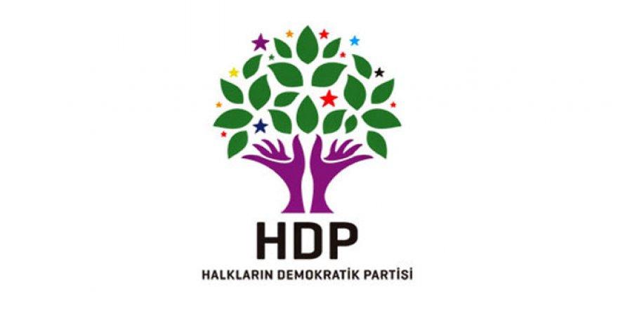 HDP'li Başkan Ergin'e Ev Hapsi