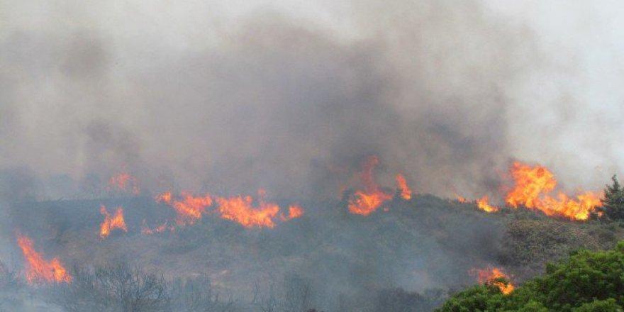 İzmir, Çeşme'de Arazi Yangını