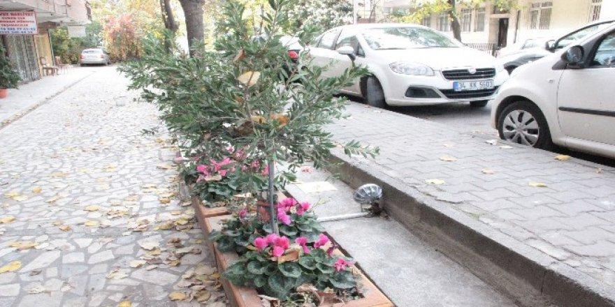 Tombili'nin Çalınan Heykeli Hırsızlar Tarafından Geri Getirildi