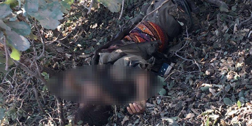 Nusaybin'de 2 PKK'lı terörist etkisiz hale getirildi