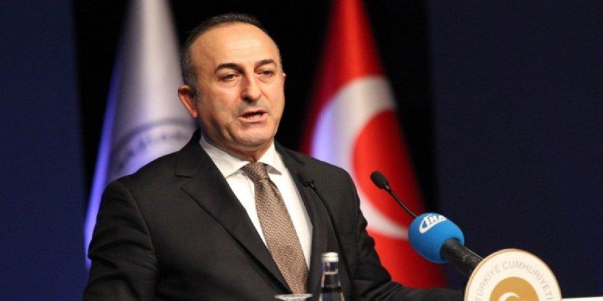Bakan Çavuşoğlu'ndan Ermeni Vekile Tokat Gibi Deaş Cevabı