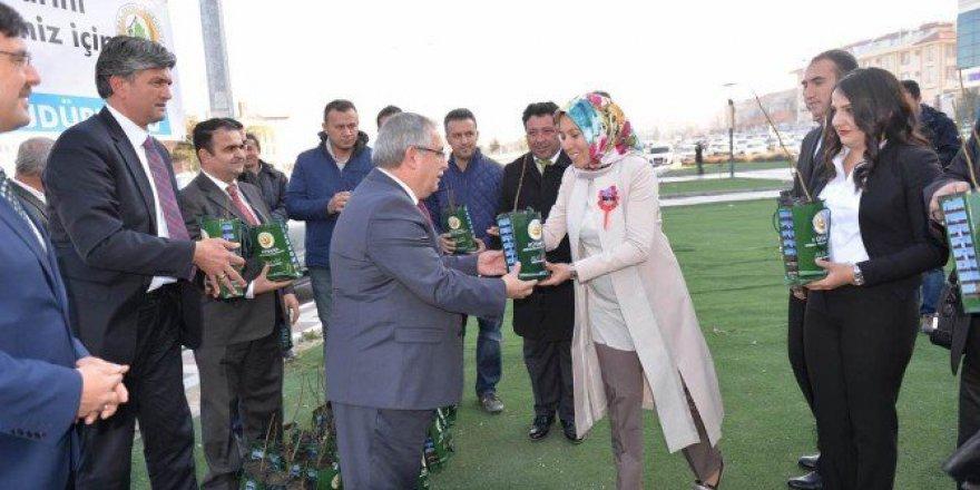 Kütahya'da Öğretmenlere 2 Bin 23 Ceviz Fidanı