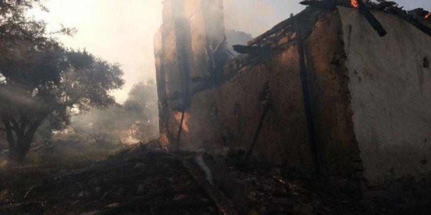 Karacasu'daki Zeytin Arazisinde Çıkan Yangın Korkuttu