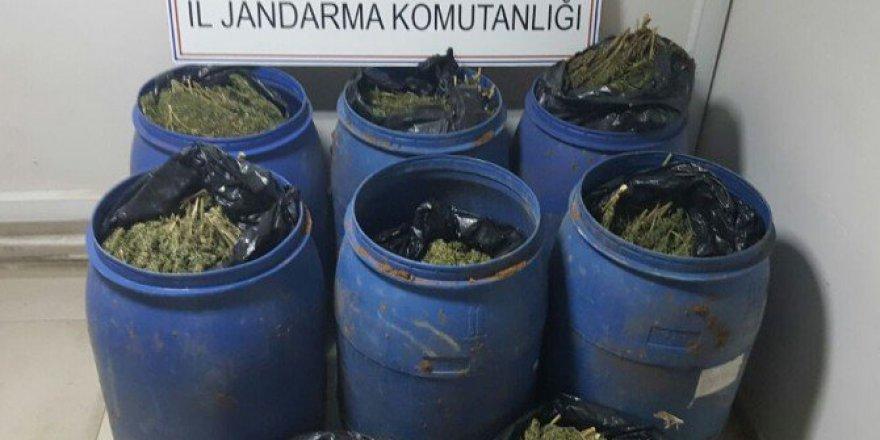Mardin, Kızıltepe'de Esrar Operasyonu: 2 Gözaltı