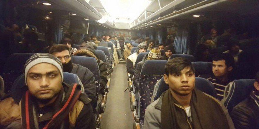 Edirne'de 83 Kaçak Göçmen Jandarma Ekiplerince Yakalandı