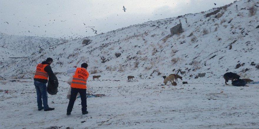 Malatya Büyükşehirden Sokak Hayvanları İçin Barınak