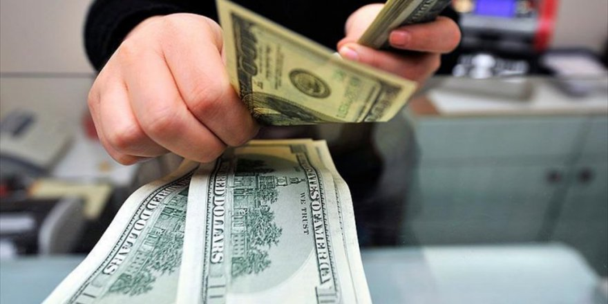 Dolardaki artışın nedeni belli oldu