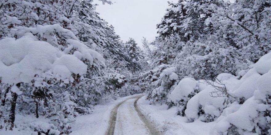 Uyarı geldi ! Çok Şiddetli Kar yağışı var
