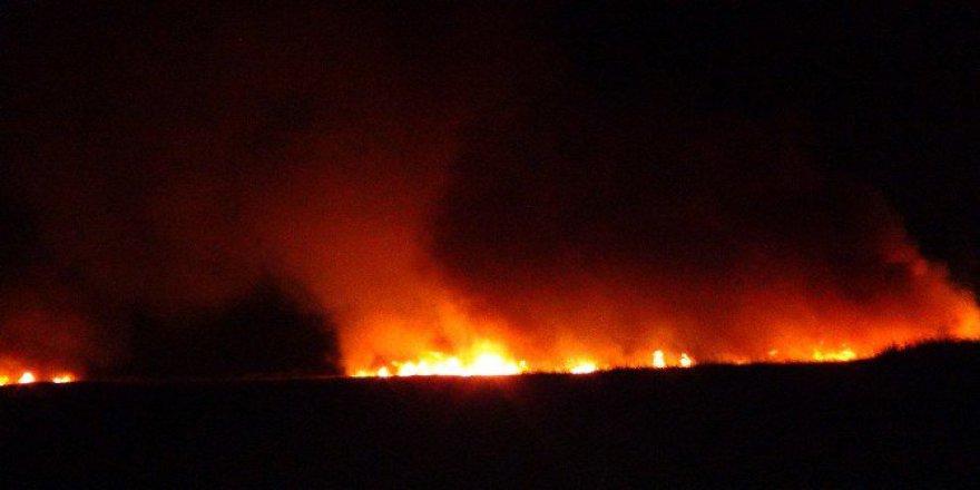 Silifke İlçesinde bulunan Göksu Deltası'nda Yangın