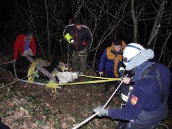 Kocaeli, Başiskele'de Uçuruma Yuvarlanan Buzağı 4 Saatte Kurtarıldı