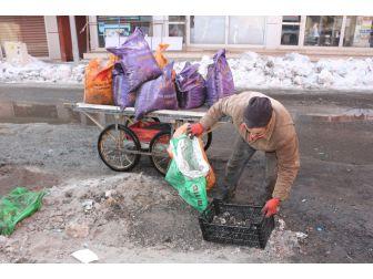 İşsiz Baba Yanmış Kömürleri Toplayıp Yakmak İçin Evine Götürüyor