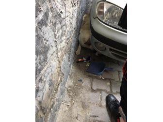 Otomobil İle Duvar Arasında Sıkışan Köpek Kurtarıldı