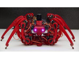 Bubi Tuzaklarına 'Örümcek Robotlu' Çözüm