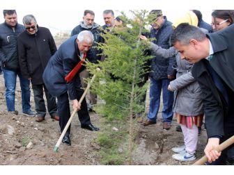 Orman Haftası'nda 12 Bin Fidan Dikildi
