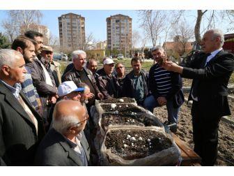 Melikgazi'de Kültür Mantarı Yetiştiriciliği Kursları Başladı