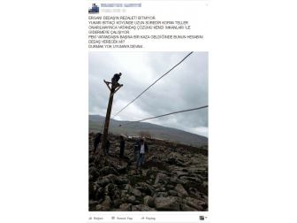 Kaçak Şebekeyi Sosyal Medya Paylaşımı Ortaya Çıkardı