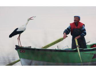 Leylek İle Bursalı Balıkçının Hikayesi Film Oluyor