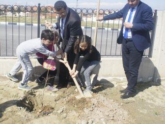 Öğrenciler Hastane Bahçesine Fidan Dikti
