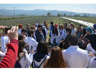 Körfezin Üniversiteli Aktarlarından, Burhaniye Çiftçi Eğitim Merkezi'ne Teknik Gezi