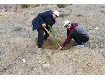 Öğrenciler Yüzlerce Fidanı Toprakla Buluşturdu