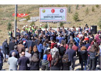 Çaycuma'da 15 Temmuz Demokrasi Şehitleri Hatıra Ormanı Oluşturuldu
