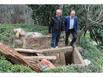İkizdere'de Ayılar Mezarlara Dadandı