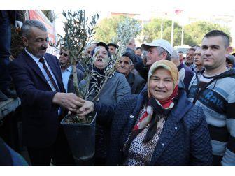 Gaziemir'de Yeşil Mutluluk
