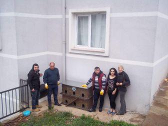 Sokak Hayvanları Barınaklarına Kavuştu