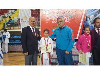 Analig Karate Final Müsabakalarında 2'nci Oldu