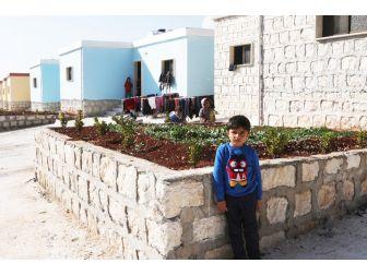 İhh Suriyeli Yetimlere Sahip Çıktı