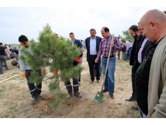 Selçuklu'da Sanayi Çalışanı Gençler Bin 71 Fidanı Toprakla Buluşturdu
