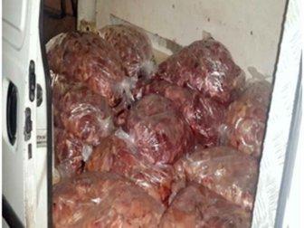 Kilis'te, 1 Ton Kokmuş Tavuk Eti Ele Geçirildi