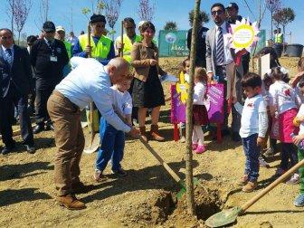 Büyükçekmece Belediyesinden 13 Şehidin Anısına 13 Çınar Ağacı