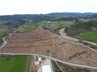 OGM, Kastamonu'da 200 Dekarda Ceviz ve Badem Dikildi