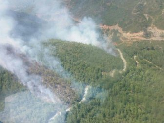 Hatay, Samandağ'da Orman Yangını