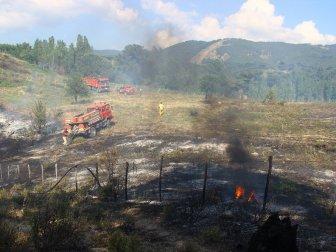 Balıkesir, Kazdağları'ndaki Yangın Korkuttu