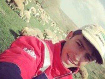 Kırşehir'de Koyun Otlatan Öğrenciye Yılan Saldırdı