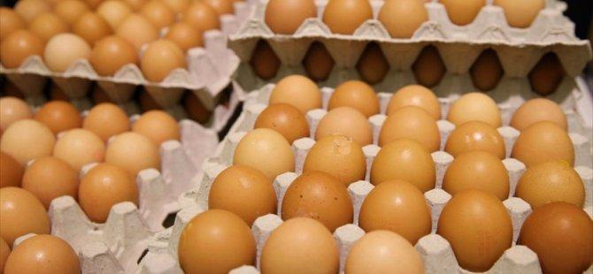 Zehirli Yumurta rezaletiyle ilgili Flaş Türkiye kararı