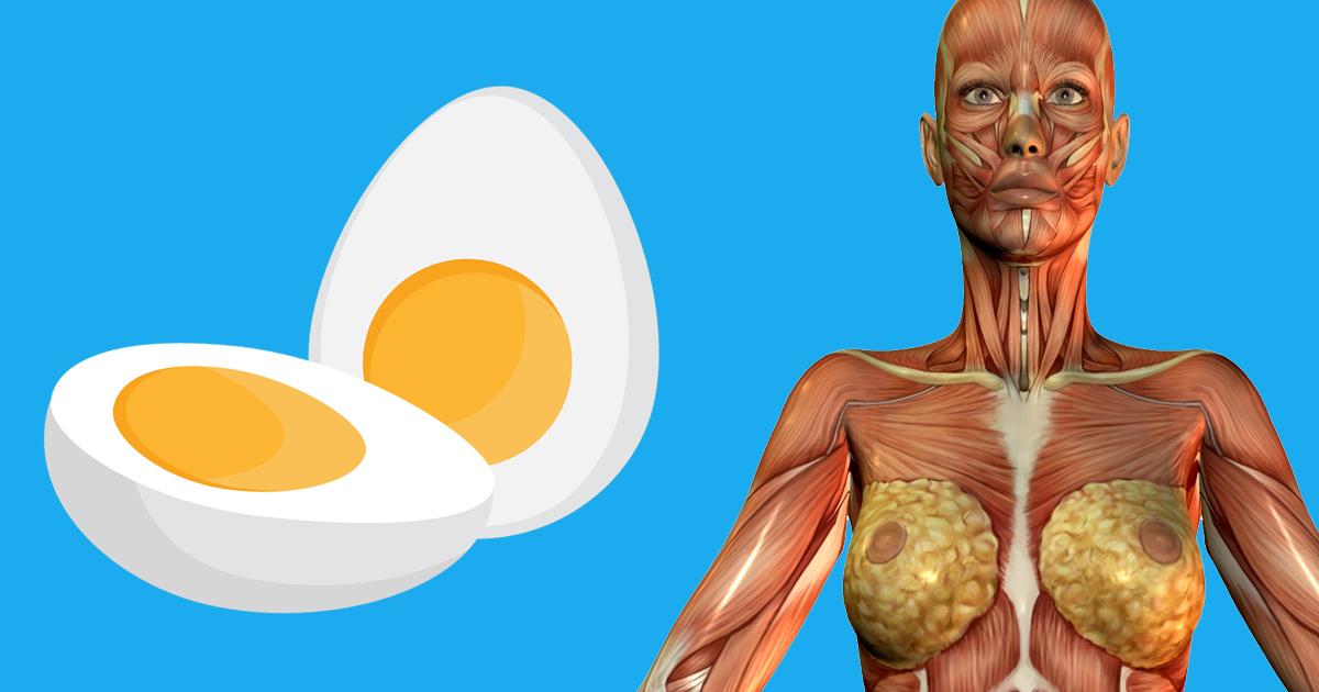 Günde 2 yumurta yedi vücudunda bakın neler oldu