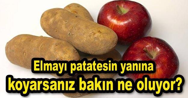 Elmayı patatesin yanına koyarsanız bakın ne oluyor?