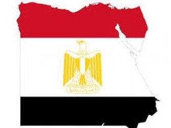 Mısır Cumhurbaşkanlığı Sözcüsü Rady: ''Mısır, Suriye Ordusunu Destekliyor''